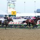 'The horse deserved it': Warfare of Will's Preakness win is Derby redemption